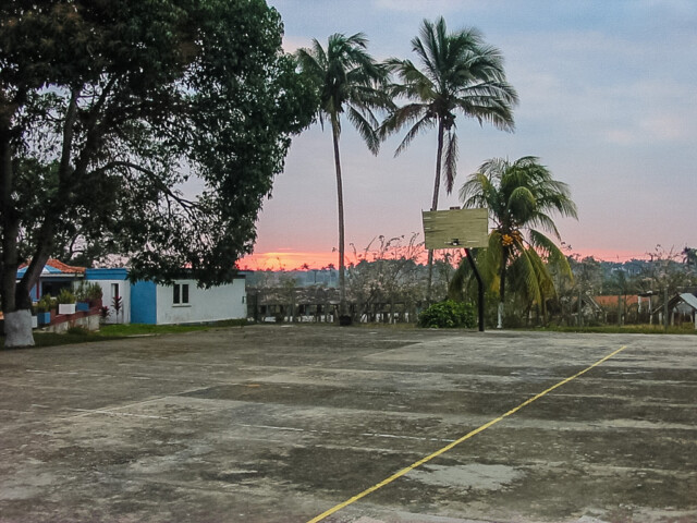 Basketball morning