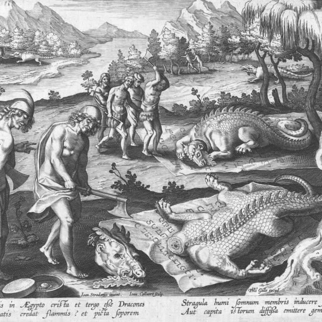 Killing Dragons in Egypt